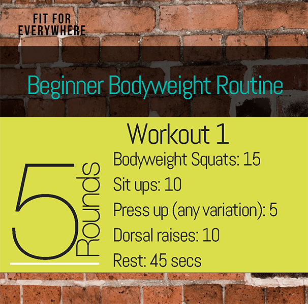 Beginner Workout Routine Home Fitness No Equipment